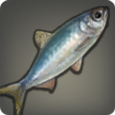 Fatty Herring Icon.png