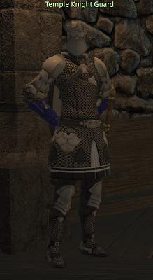 temple knight guard gamer escape