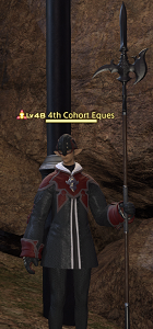 4th Cohort Eques.png
