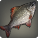 Agelyss Carp Icon.png