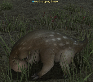 Snapping Shrew.png