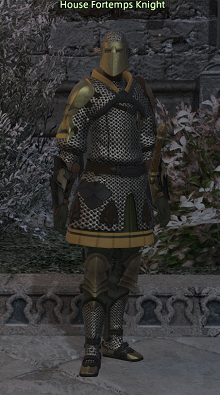 House Fortemps Knight (NPC)-Ishgard.png