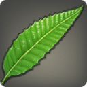 Cloudweed Icon.png