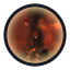 Umbral Flare icon.png
