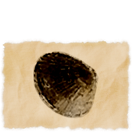 Model-Pond Mussel.png