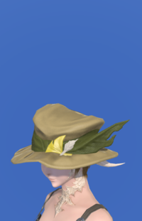 Model-Augmented Fieldking's Hat-Female-AuRa.png