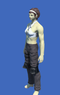 Model-Obsolete Android's Trousers of Scouting-Female-Roe.png