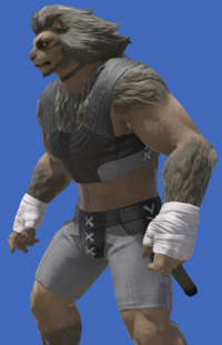 Model-Pagos Field Dressing-Male-Hrothgar.png