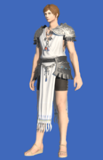 Model-Republican Eques's Chiton-Male-Hyur.png
