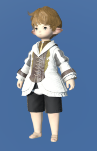 Model-Woolen Bliaud-Male-Lalafell.png