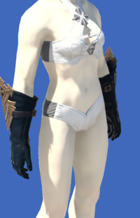 Model-Anamnesis Gloves of Casting-Female-Roe.png