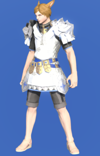 Model-Augmented Gallant Surcoat-Male-Miqote.png
