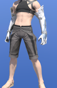 Model-Hailstorm Gloves of Healing-Male-Miqote.png