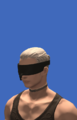 Model-No.2 Type B Goggles-Male-Hyur.png