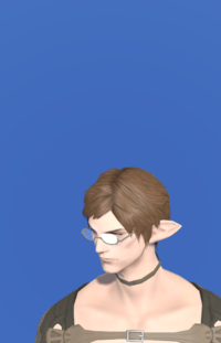 Model-Artisan's Spectacles-Male-Elezen.png