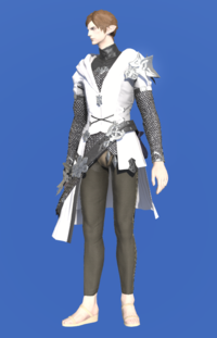Model-Direwolf Tabard of Aiming-Male-Elezen.png
