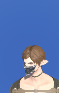 Model-Picaroon's Mask of Scouting-Male-Elezen.png