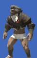 Model-Torn Manderville Coatee-Male-Hrothgar.png