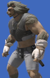 Model-Valerian Wizard's Fingerless Halfgloves-Male-Hrothgar.png