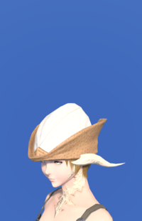 Model-Aetherial Hunting Hat-Female-AuRa.png