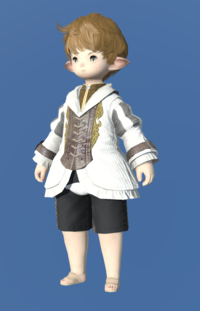 Model-Aetherial Woolen Bliaud-Male-Lalafell.png