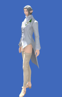 Model-Tailcoat of Eternal Passion-Female-Elezen.png