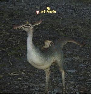 anole gamer escape