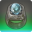 Gladiator's Ring Icon.png