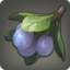 Pixie Plums Icon.png