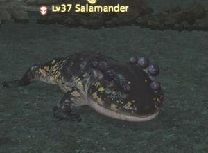 Salamander – Gamer Escape: Gaming News, Reviews, Wikis, and