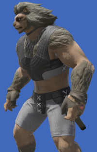 Model-Boarskin Ringbands of Flames-Male-Hrothgar.png