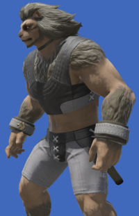 Model-Trailblazer's Wristguards-Male-Hrothgar.png