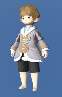 Model-Aetherial Felt Bliaud-Male-Lalafell.png