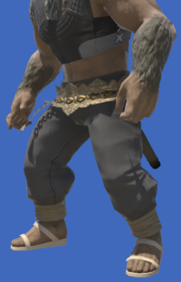 Model-Elemental Bottoms of Healing-Male-Hrothgar.png
