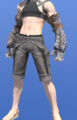Model-Gnath Arms-Male-Miqote.png