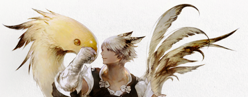 ... fight by your side after completing the quest My Feisty Little Chocobo