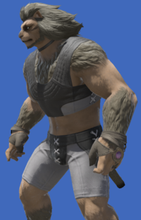 Model-Boarskin Ringbands of Storms-Male-Hrothgar.png