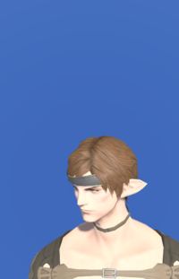 Model-Alliance Circlet of Casting-Male-Elezen.png