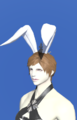 Model-Bunny Chief Crown-Female-Roe.png