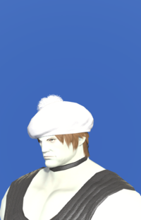 Model-White Beret-Male-Roe.png