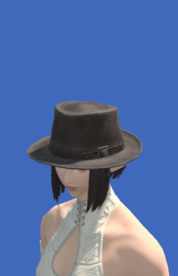Model-Aesthete's Hat of Gathering-Female-Elezen.png