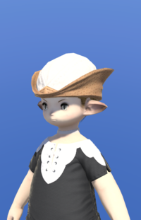 Model-Aetherial Hunting Hat-Male-Lalafell.png