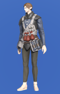 Model-Royal Volunteer's Gambison of Healing-Male-Elezen.png