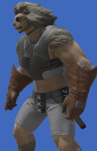 Model-Gridanian Soldier's Gloves-Male-Hrothgar.png