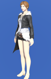 Model-Leonhart Jacket-Female-Hyur.png