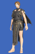 Model-Republican Signifer's Chiton-Male-Hyur.png