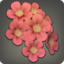 Red Cherry Blossom Corsage Icon.png
