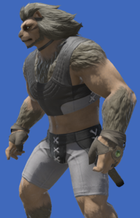 Model-Aetherial Boarskin Ringbands of Gales-Male-Hrothgar.png