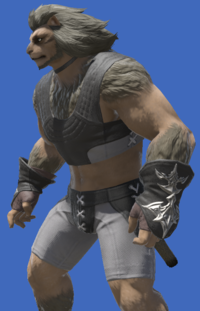 Model-The Forgiven's Gloves of Healing-Male-Hrothgar.png