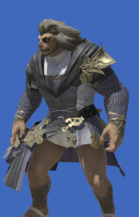 Model-Brand-new Tabard-Male-Hrothgar.png